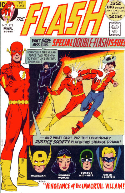 Flash 213 cover