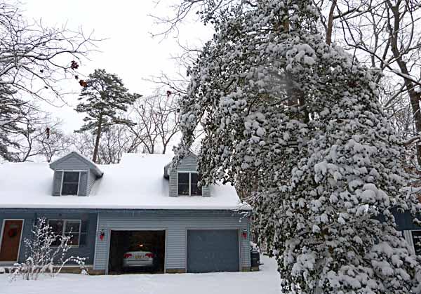 SnowyHouse